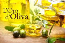 """Al via il primo concorso fotografico """"L'oro d'oliva"""""""