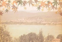 """""""Festa dell'olio e dei sapori d'autunno"""": un programma ricco di appuntamenti"""