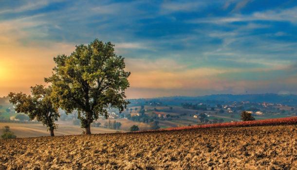 """""""Meravigliosa Terra Umbra"""":  il cuore verde d'Italia attraverso gli occhi di Iris Valorosi"""